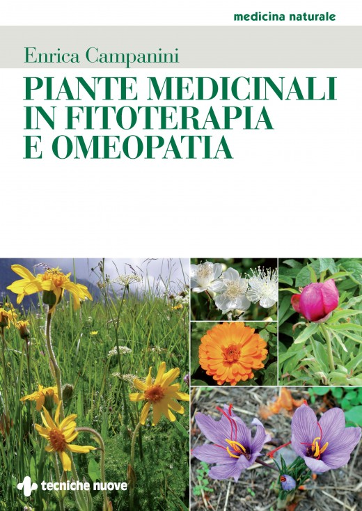 book Physikalische